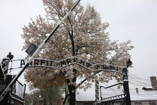 Wilkommen am Auschwitz.