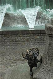 Dwarfs of Wroclaw: by vagabonds, Views[291]