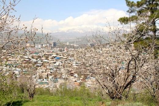 Dushanbe from WW II park