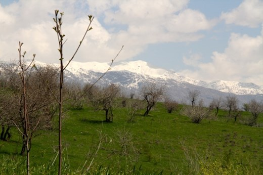Dushanbe, surrounded by snowy mountains