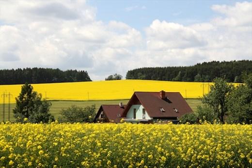 Czech countryside