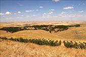 Gobekli Tepe, Fertile Crescent, not far from Syria: by vagabonds3, Views[230]