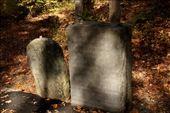 Original monument at King's Mountain National Battlefield, South Carolina: by vagabonds3, Views[41]