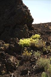 Craters of the Moon National Monument: by vagabonds3, Views[126]