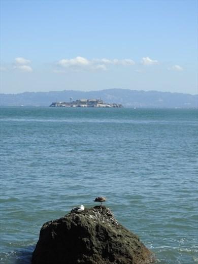 Alcatraz from Fort Point