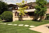 Emil Bach House, Chicago: by vagabonds3, Views[29]