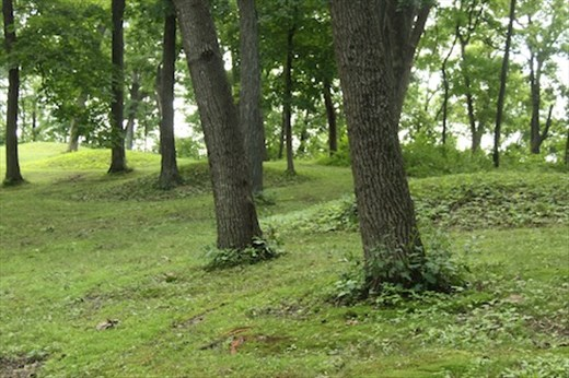 Fire Point Mounds, Effigy Mounds NM