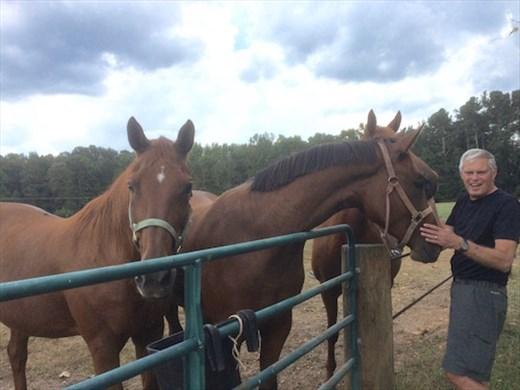 Horse Whispering in Georgia