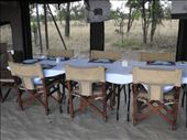 White linen and real sliverware, Northern Safari Camp: by vagabonds3, Views[1]