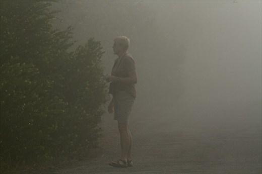 Birding in the fog, JW Corbett NWR
