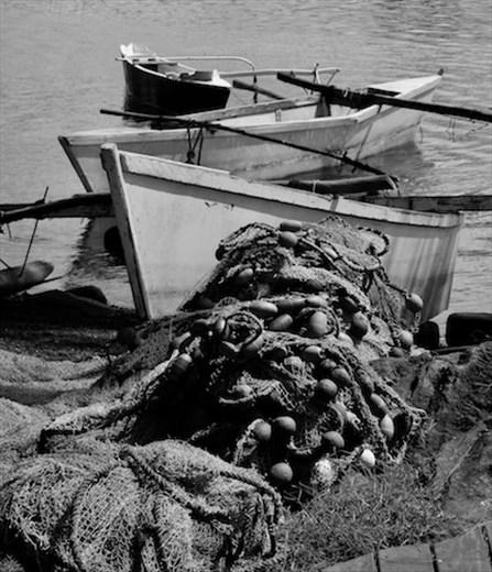 Fishing boats, Papeete