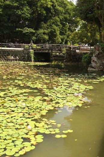 Kochi Castle moat