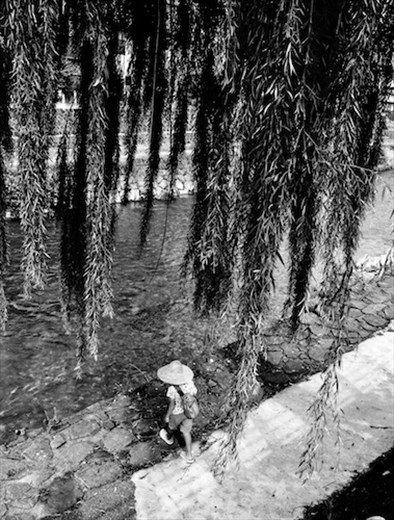 Boy under Willow Tree, Takayama