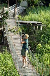 Birding on the boardwalk, Pantanal, Mato Grosso do Sul: by vagabondstoo, Views[287]