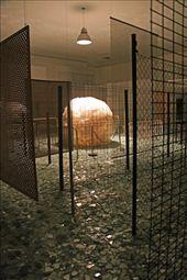 ????? Center for Contemporary Art, Inhotim: by vagabondstoo, Views[183]