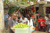 Flower market, Cartagena: by vagabondstoo, Views[289]