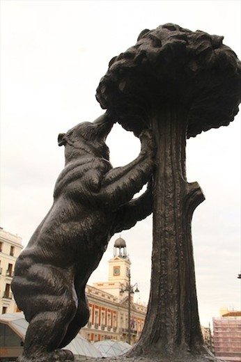 The berry eating bear, symbol of Madrid