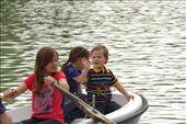 Rowing on Retiro Park, Madrid: by vagabondstoo, Views[216]