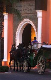 Luxury hotel, Marrakech: by vagabondstoo, Views[128]