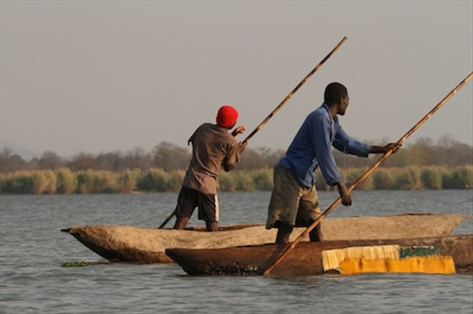 Going fishing - illegally, Liwonde NP