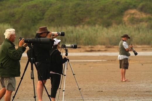 We're not the only birders, iSimangaliso National Wetlands