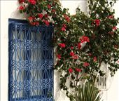 Blue door, Sidi Bou Said: by vagabondstoo, Views[222]