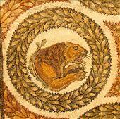 Tiger mosaic, Bardo Museum: by vagabondstoo, Views[300]