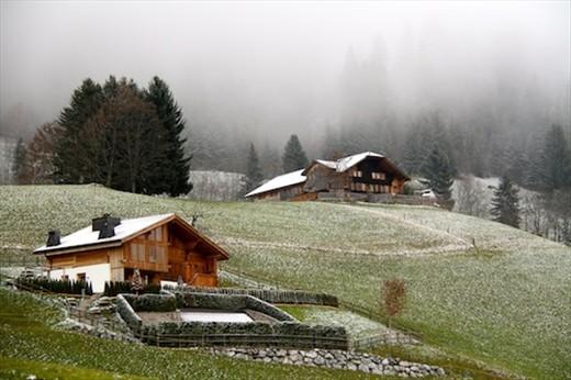 Snowy day, Bernese Oberland