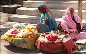 Flower ladies, Udaipur: by vagabondstoo, Views[252]