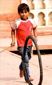 Rollin' in Delhi: by vagabondstoo, Views[358]