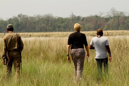On foot in the bush, Manas National Park, Assam