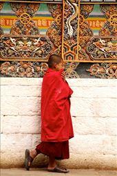Young monk, Punakha Dzong: by vagabondstoo, Views[276]