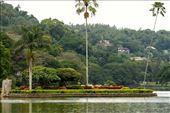 Kandy Lake: by vagabondstoo, Views[172]