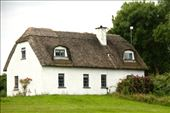 Thatch cottage, Dunclaire: by vagabondstoo, Views[254]