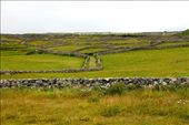 A maze of stone walls, Innishmore: by vagabondstoo, Views[142]
