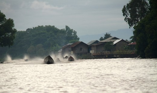 Attack of the long tails, Inle Lake