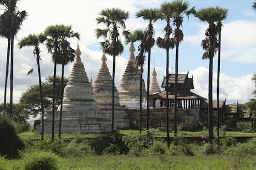 Stupas and palms, Bagan Archeological Area