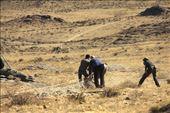Connie mugs her ibex, Ikh Nart Nature Reserve: by vagabondstoo, Views[184]