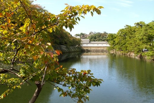 Hikone Castle from moat, Hikone