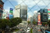 Shibuya:  Cross at the green, not in-between!: by vagabondstoo, Views[258]