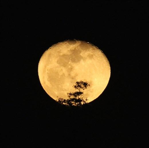 Moonrise, Mindanao