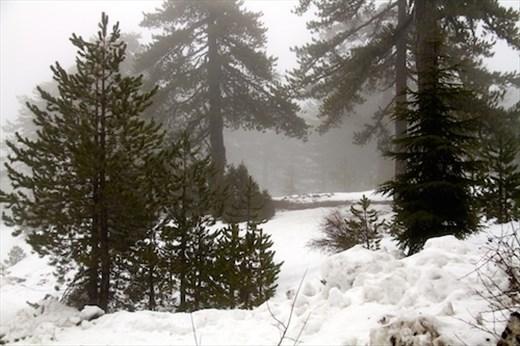 Mountain snow in Trodos