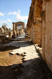 Roman road and Triumphal Arch, Hippodrome at Tyre: by vagabondstoo, Views[215]