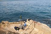 A bad day fishing is better than a good day working, Beirut: by vagabondstoo, Views[157]