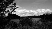 by vampyrlady, Views[96]