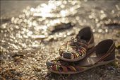 The festival shoes are parked to mark the end of 2012.: by vanessaindovino, Views[91]
