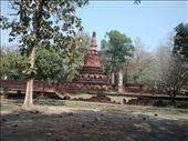Wat Phra Kaeo: by veganliesa, Views[100]
