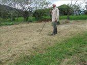 ...and raking it all by myself, twice, was good, exhausting work!: by viajerofrye, Views[155]