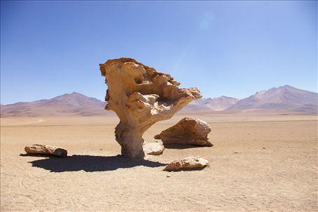 Stone tree!