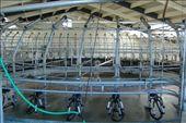 rotary shed (Waiono): by vik, Views[317]